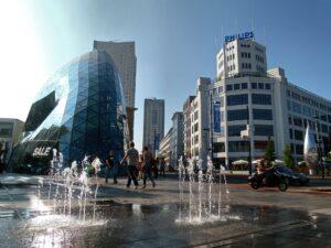 wietzaden kopen Eindhoven