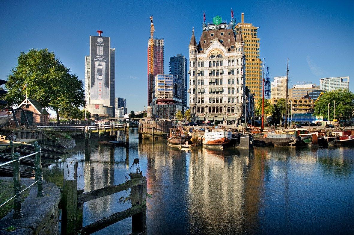 wietzaden bestellen in Rotterdam