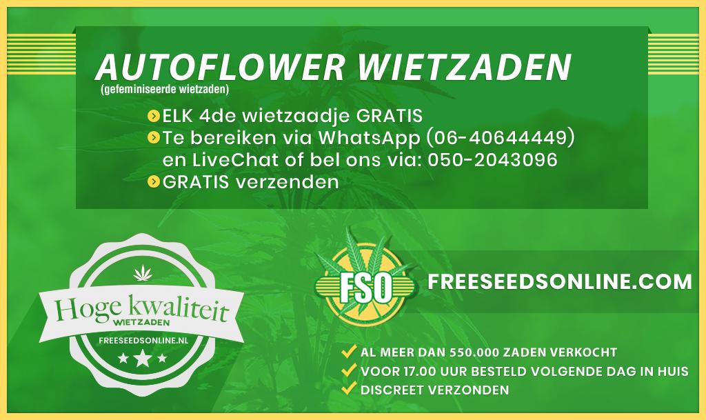 Autoflowering zaden kopen
