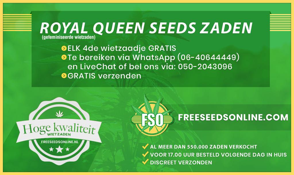 Royal Queen Seeds zaden